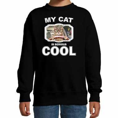 Auto rijdende katten / poezen trui / sweater my cat is serious cool zwart voor kinderen