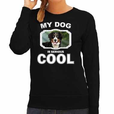 Berner sennen honden sweater / trui my dog is serious cool zwart voor dames