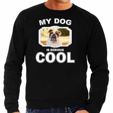 Britse bulldog honden sweater / trui my dog is serious cool zwart voor heren