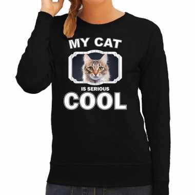 Bruine kat katten sweater / trui my cat is serious cool zwart voor dames