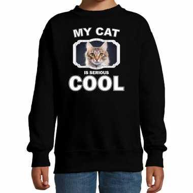 Bruine katten / poezen trui / sweater my cat is serious cool zwart voor kinderen