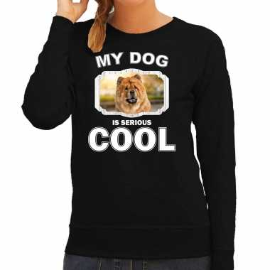 Chow chow honden sweater / trui my dog is serious cool zwart voor dames