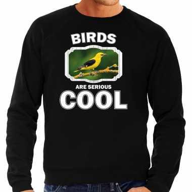 Dieren wielewaal vogel sweater zwart heren - birds are cool trui