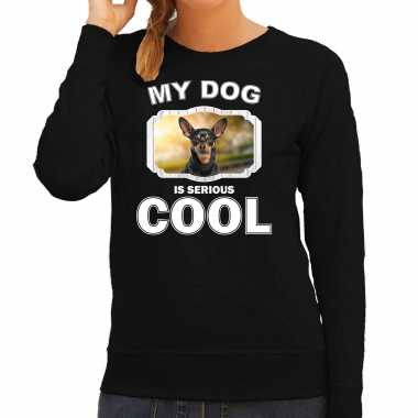 Dwergpinscher honden sweater / trui my dog is serious cool zwart voor dames