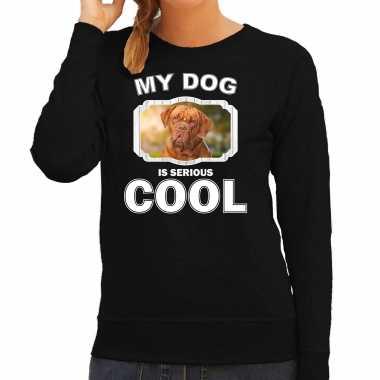Franse mastiff honden sweater / trui my dog is serious cool zwart voor dames