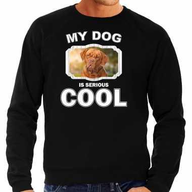 Franse mastiff honden sweater / trui my dog is serious cool zwart voor heren