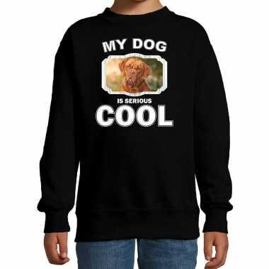 Franse mastiff honden trui / sweater my dog is serious cool zwart voor kinderen