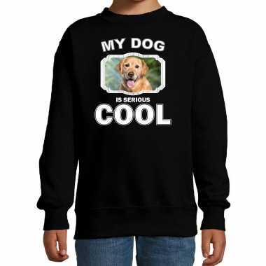 Golden retriever honden trui / sweater my dog is serious cool zwart voor kinderen