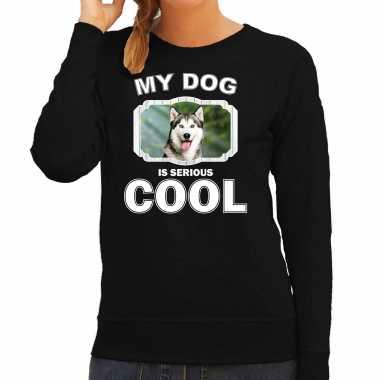 Husky honden sweater / trui my dog is serious cool zwart voor dames