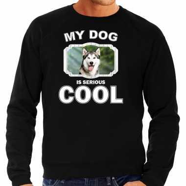 Husky honden sweater / trui my dog is serious cool zwart voor heren