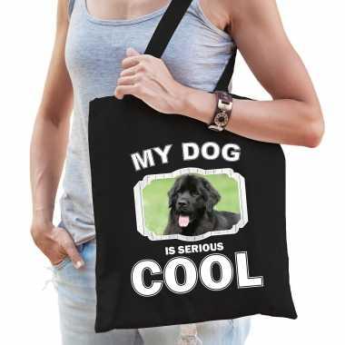 Newfoundlander honden tasje zwart volwassenen en kinderen - my dog serious is cool kado boodschappe