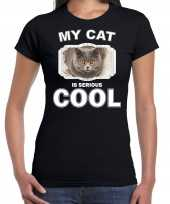 Britse korthaar katten poezen t shirt my cat is serious cool zwart voor dames