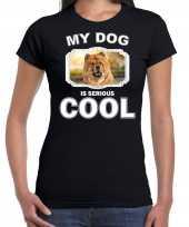 Chow chows honden t shirt my dog is serious cool zwart voor dames