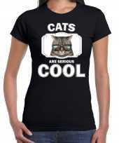 Dieren coole poes t shirt zwart dames cats are cool shirt