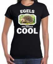 Dieren egel t shirt zwart dames egels are cool shirt