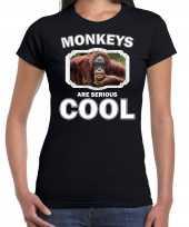 Dieren gekke orangoetan t shirt zwart dames monkeys are cool shirt