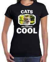 Dieren gekke poes t shirt zwart dames cats are cool shirt
