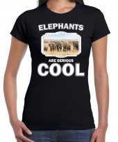 Dieren olifant t shirt zwart dames elephants are cool shirt kudde olifanten