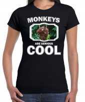 Dieren orangoetan t shirt zwart dames monkeys are cool shirt