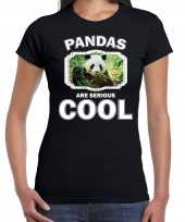 Dieren panda t shirt zwart dames pandas are cool shirt
