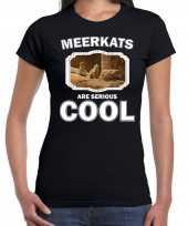 Dieren stokstaartje t shirt zwart dames meerkats are cool shirt