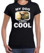 Dwergpinschers honden t shirt my dog is serious cool zwart voor dames