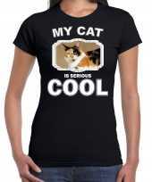 Lapjeskat katten poezen t shirt my cat is serious cool zwart voor dames