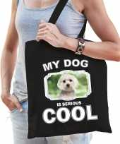 Maltezer honden tasje zwart volwassenen en kinderen my dog serious is cool kado boodschappentasje