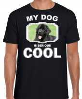 Newfoundlander honden t shirt my dog is serious cool zwart voor heren