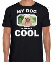 Poedel honden t shirt my dog is serious cool zwart voor heren