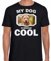 Staffordshire bull terrier honden t shirt my dog is serious cool zwart voor heren