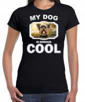 Yorkshire terriers honden t shirt my dog is serious cool zwart voor dames